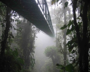 d77bf-costa_rica_santa_elena_skywalk-1280-1024