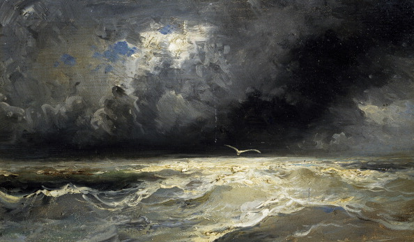 Stormy sea with seagull